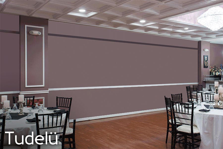 Tudelu - Tudelü Motorized Walls allow you to optimize any room with a completely customizable, retractable wall, that transforms your space in seconds!